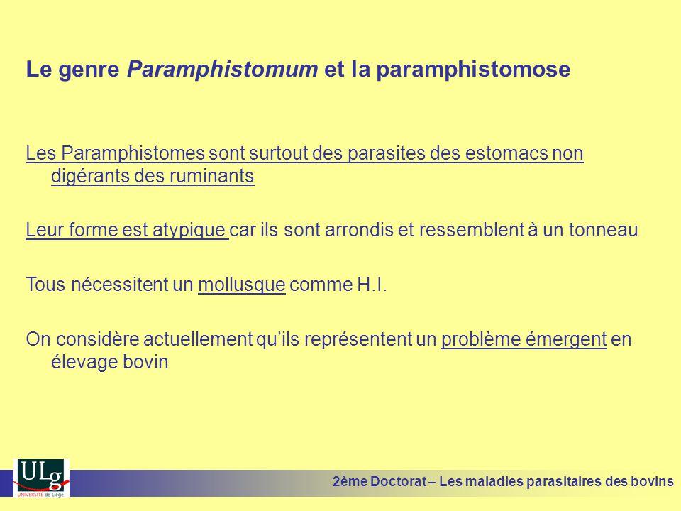 Le genre Paramphistomum et la paramphistomose Les Paramphistomes sont surtout des parasites des estomacs non digérants des ruminants Leur forme est at