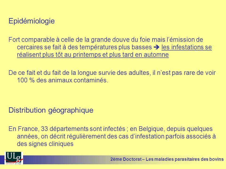 Epidémiologie Fort comparable à celle de la grande douve du foie mais l'émission de cercaires se fait à des températures plus basses  les infestation