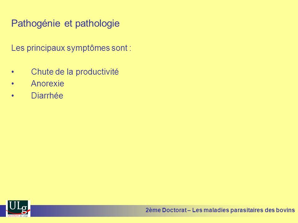 Pathogénie et pathologie Les principaux symptômes sont : •Chute de la productivité •Anorexie •Diarrhée 2ème Doctorat – Les maladies parasitaires des b