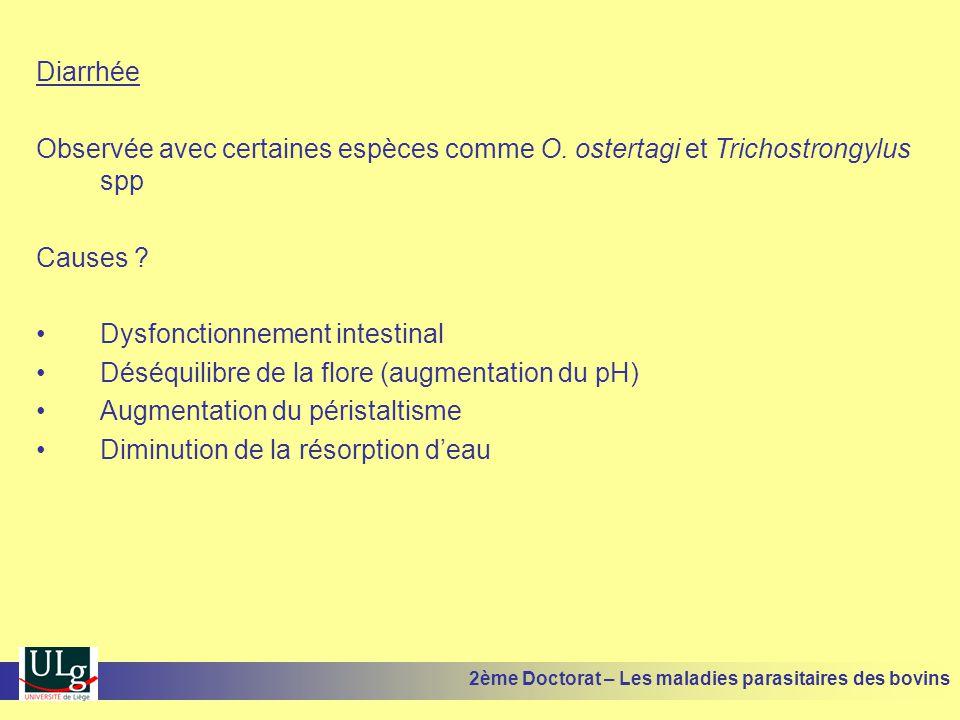 Diarrhée Observée avec certaines espèces comme O. ostertagi et Trichostrongylus spp Causes ? •Dysfonctionnement intestinal •Déséquilibre de la flore (