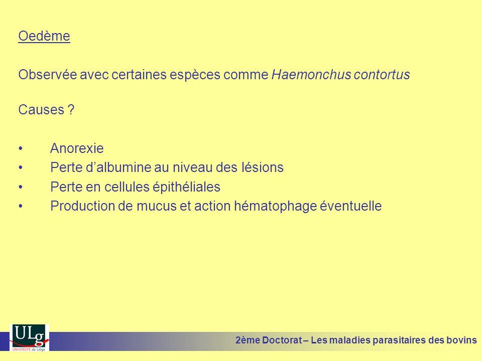 Oedème Observée avec certaines espèces comme Haemonchus contortus Causes ? •Anorexie •Perte d'albumine au niveau des lésions •Perte en cellules épithé