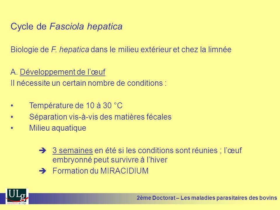 Cycle de Fasciola hepatica Biologie de F. hepatica dans le milieu extérieur et chez la limnée A. Développement de l'œuf Il nécessite un certain nombre