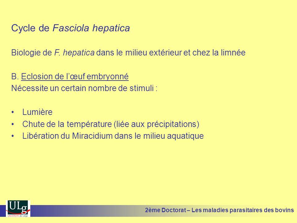 Cycle de Fasciola hepatica Biologie de F. hepatica dans le milieu extérieur et chez la limnée B. Eclosion de l'œuf embryonné Nécessite un certain nomb