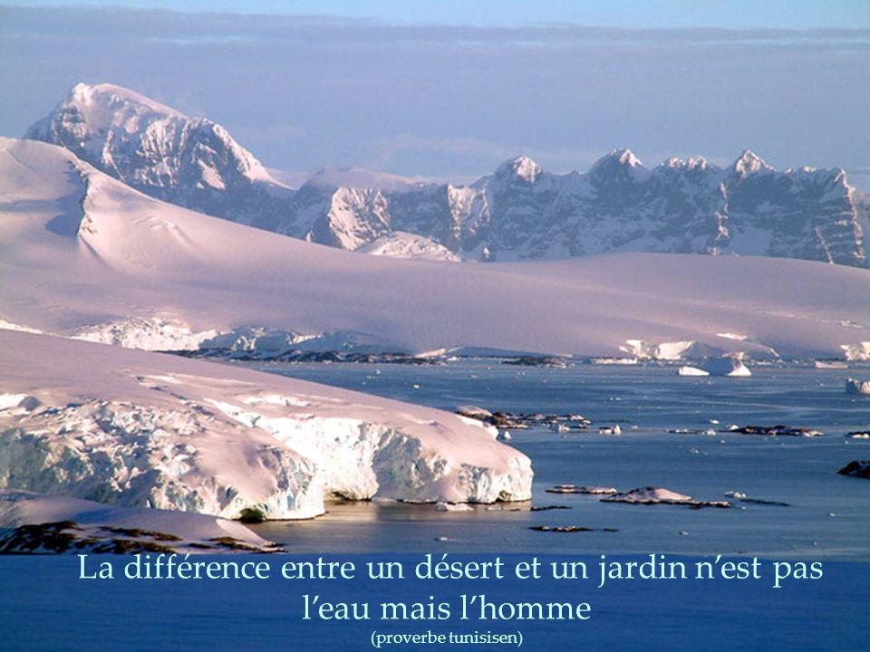 Le bonheur n'est pas au sommet de la montagne mais dans la façon de la gravir. (Confucius)