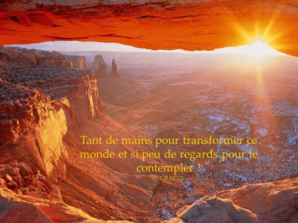 La joie de contempler et de comprendre, voilà le langage que me porte la nature (A. Enstein)