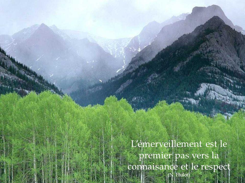 La terre n'est pas un don de nos parents, ce sont nos enfants qui nous la prête (proverbe indien)
