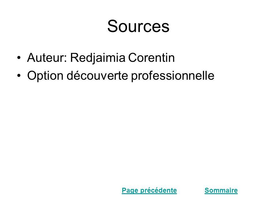 Sources •Auteur: Redjaimia Corentin •Option découverte professionnelle SommairePage précédente