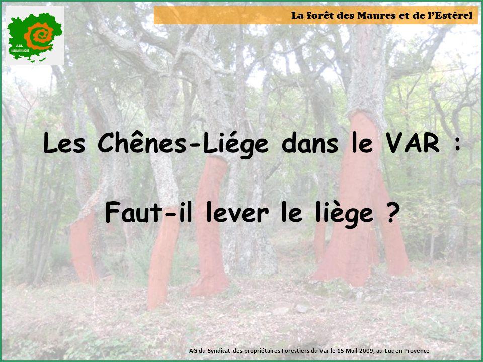 La forêt des Maures et de l'Estérel AG du Syndicat des propriétaires Forestiers du Var le 15 Mail 2009, au Luc en Provence Les Chênes-Liége dans le VA