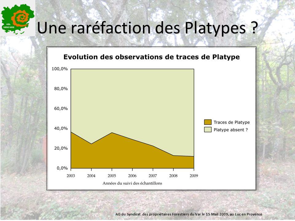 Une raréfaction des Platypes ? AG du Syndicat des propriétaires Forestiers du Var le 15 Mail 2009, au Luc en Provence