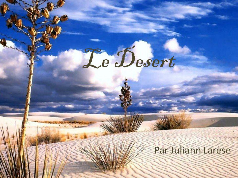 Le Desert Par Juliann Larese