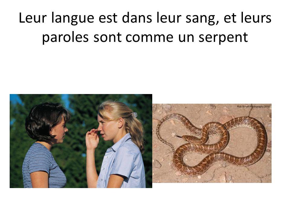 Leur langue est dans leur sang, et leurs paroles sont comme un serpent