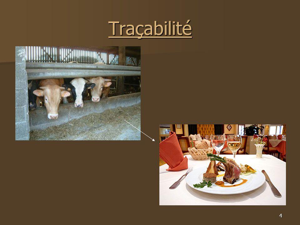 4 Traçabilité