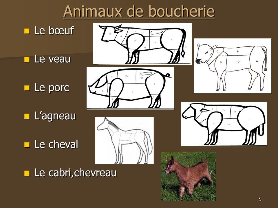 5 Animaux de boucherie  Le bœuf  Le veau  Le porc  L'agneau  Le cheval  Le cabri,chevreau