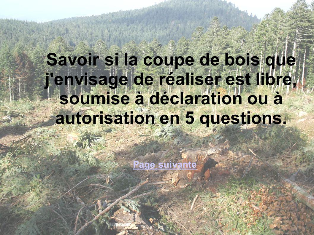 1 MAJ -septembre 2013 Savoir si la coupe de bois que j'envisage de réaliser est libre, soumise à déclaration ou à autorisation en 5 questions. Page su
