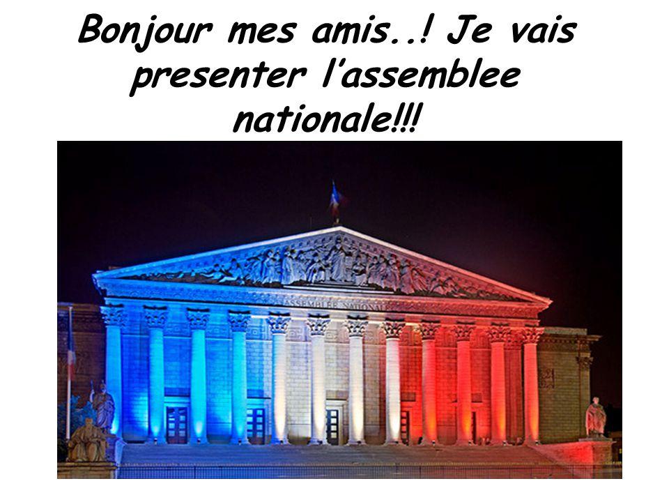 Bonjour mes amis..! Je vais presenter l'assemblee nationale!!!