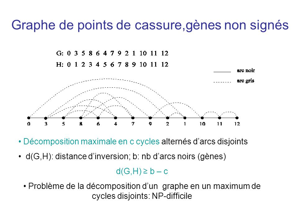 Graphe de points de cassure,gènes non signés • Décomposition maximale en c cycles alternés d'arcs disjoints • d(G,H): distance d'inversion; b: nb d'ar