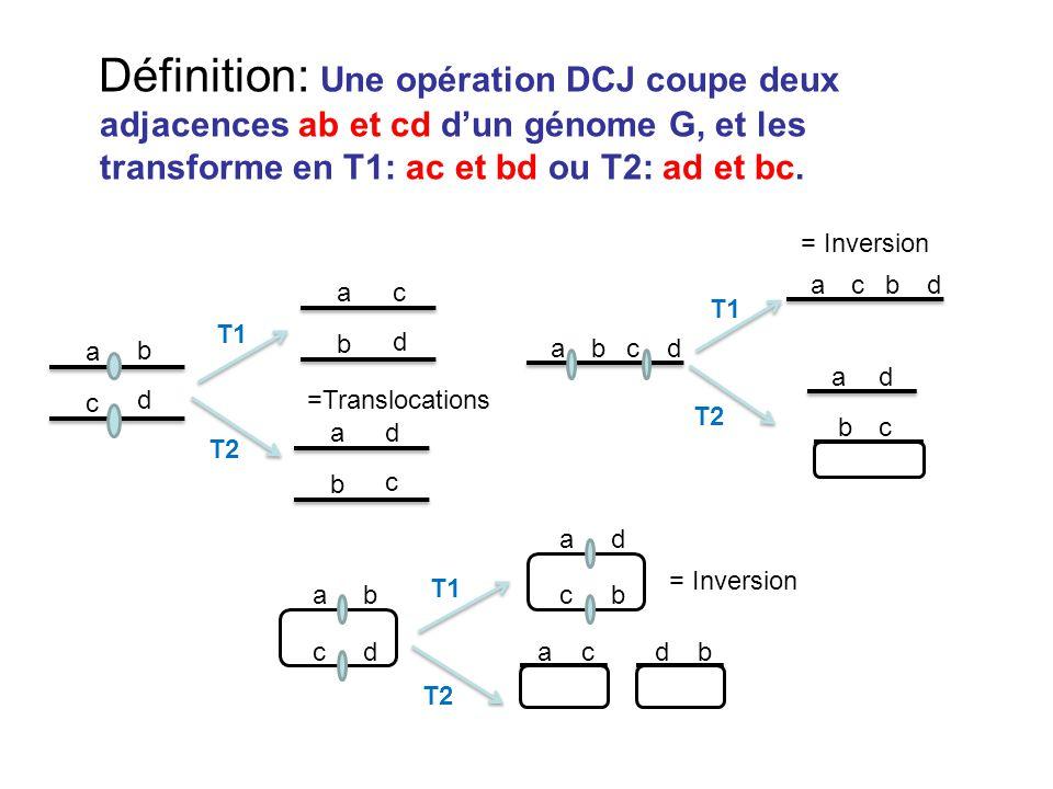 Définition: Une opération DCJ coupe deux adjacences ab et cd d'un génome G, et les transforme en T1: ac et bd ou T2: ad et bc. a b c d ac b d a d b c
