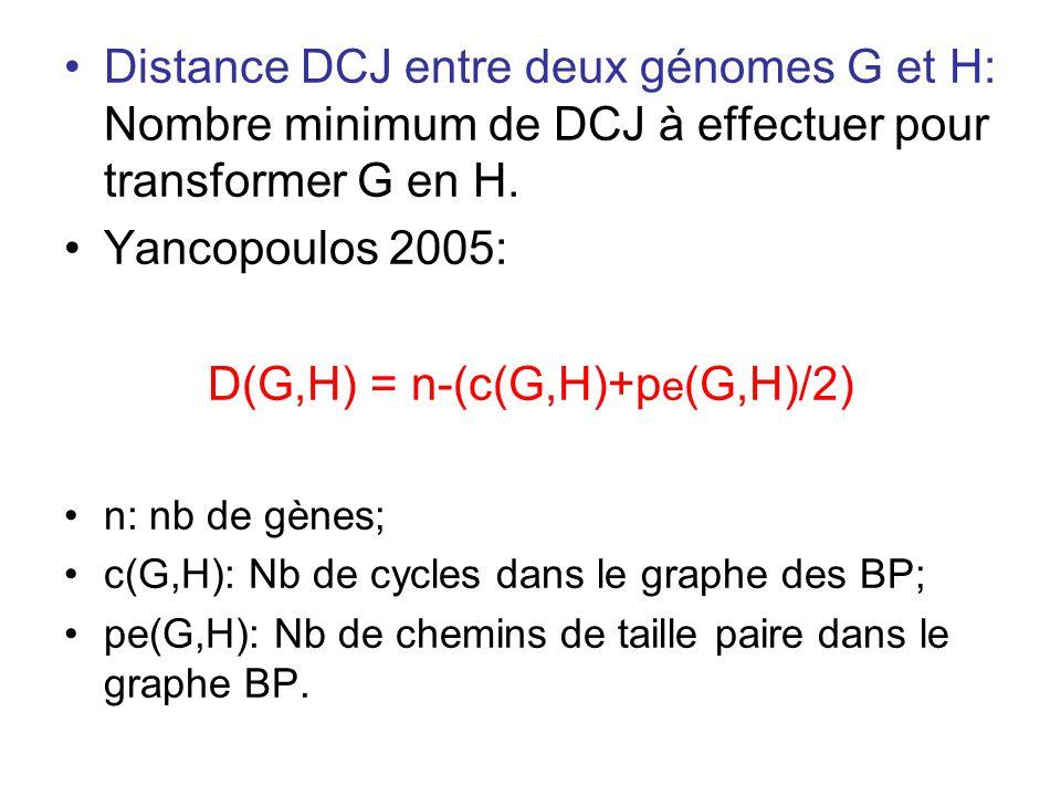 •Distance DCJ entre deux génomes G et H: Nombre minimum de DCJ à effectuer pour transformer G en H. •Yancopoulos 2005: D(G,H) = n-(c(G,H)+p e (G,H)/2)
