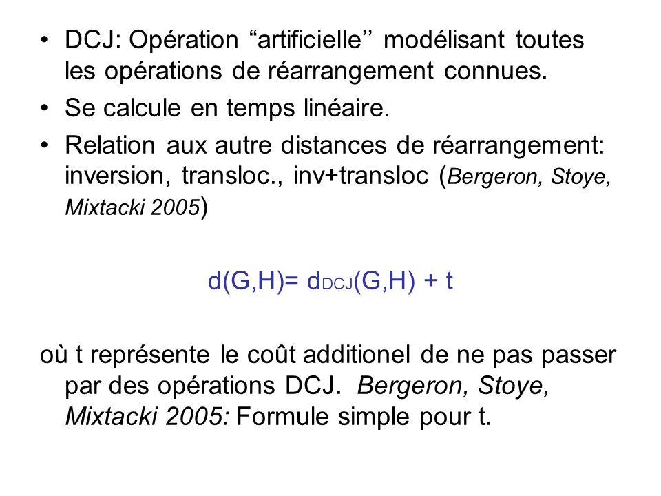 """•DCJ: Opération """"artificielle'' modélisant toutes les opérations de réarrangement connues. •Se calcule en temps linéaire. •Relation aux autre distance"""