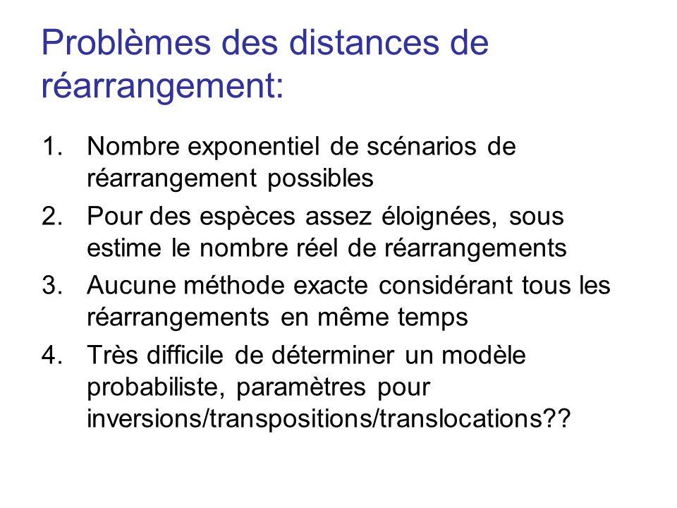 Problèmes des distances de réarrangement: 1.Nombre exponentiel de scénarios de réarrangement possibles 2.Pour des espèces assez éloignées, sous estime