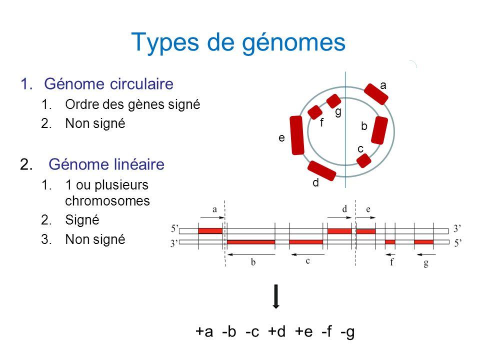Types de génomes 1.Génome circulaire 1.Ordre des gènes signé 2.Non signé 2. Génome linéaire 1.1 ou plusieurs chromosomes 2.Signé 3.Non signé a e c g d
