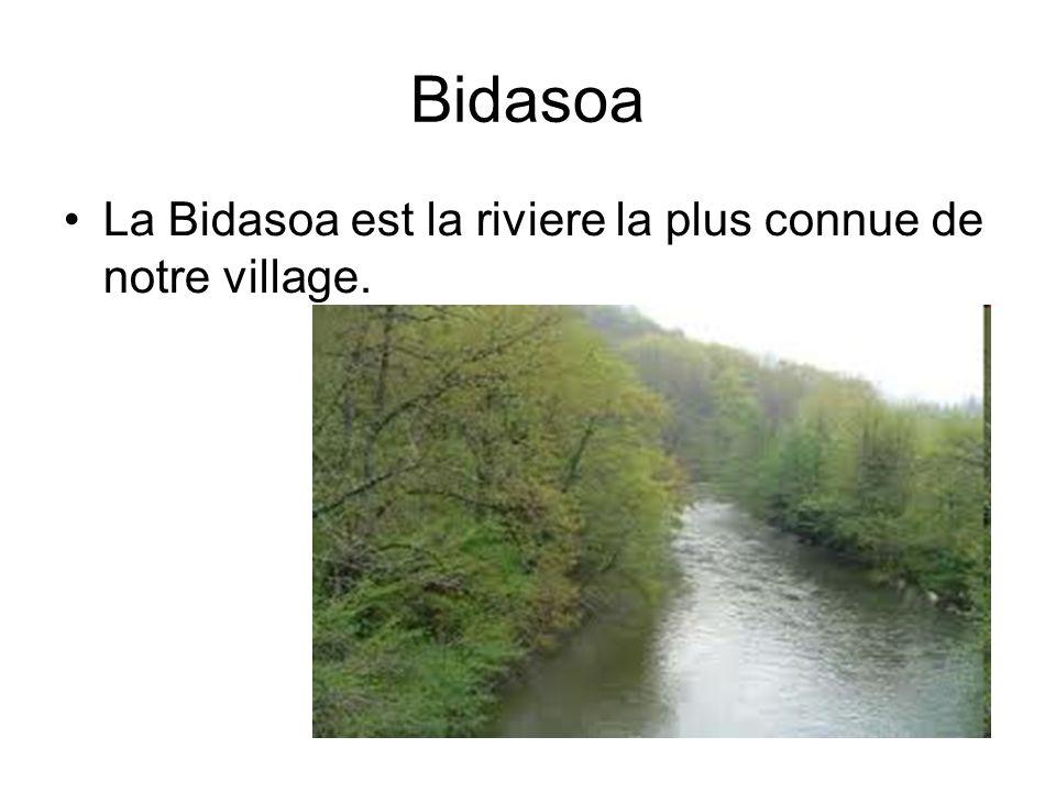 Bidasoa •La Bidasoa est la riviere la plus connue de notre village.