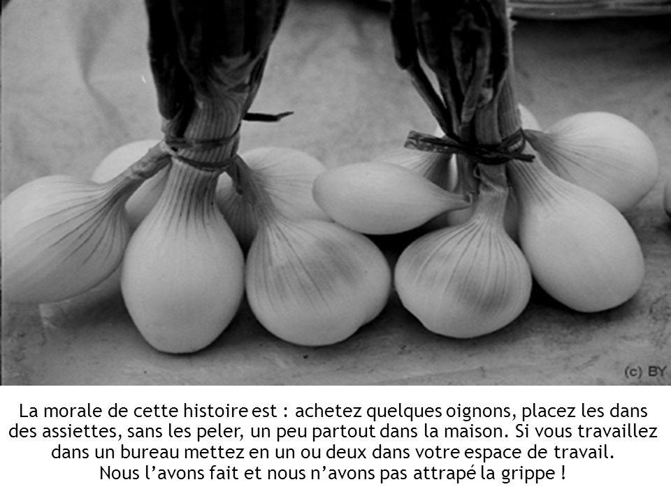 La morale de cette histoire est : achetez quelques oignons, placez les dans des assiettes, sans les peler, un peu partout dans la maison.