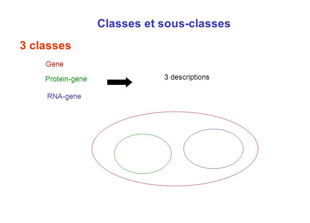 Classes et sous-classes 3 classes Protein-gene RNA-gene Gene 3 descriptions