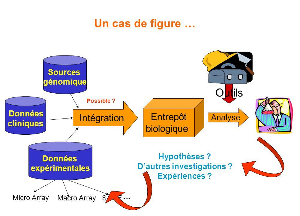 Un cas de figure … Sources génomique Entrepôt biologique Intégration Micro Array Macro ArraySAGE... Données expérimentales Données cliniques Analyse O
