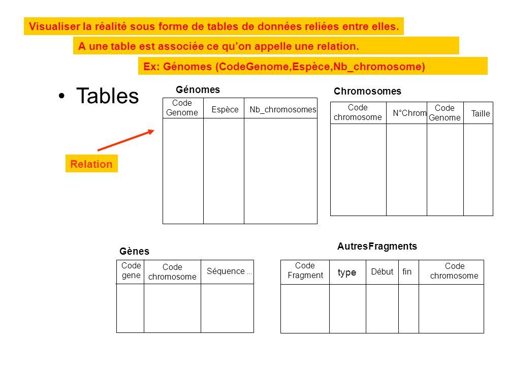 Ex: Génomes (CodeGenome,Espèce,Nb_chromosome) •Tables Visualiser la réalité sous forme de tables de données reliées entre elles. A une table est assoc