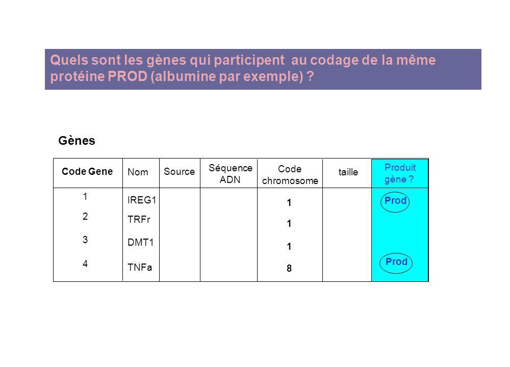 Quels sont les gènes qui participent au codage de la même protéine PROD (albumine par exemple) ? Gènes Code chromosome IREG1 TRFr DMT1 TNFa 11181118 N