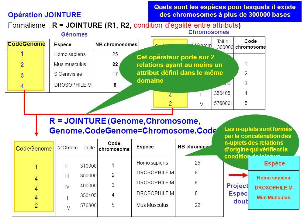 R = JOINTURE (Genome,Chromosome, Genome.CodeGenome=Chromosome.CodeGenome) Opération JOINTURE Formalisme : R = JOINTURE (R1, R2, condition d'égalité en