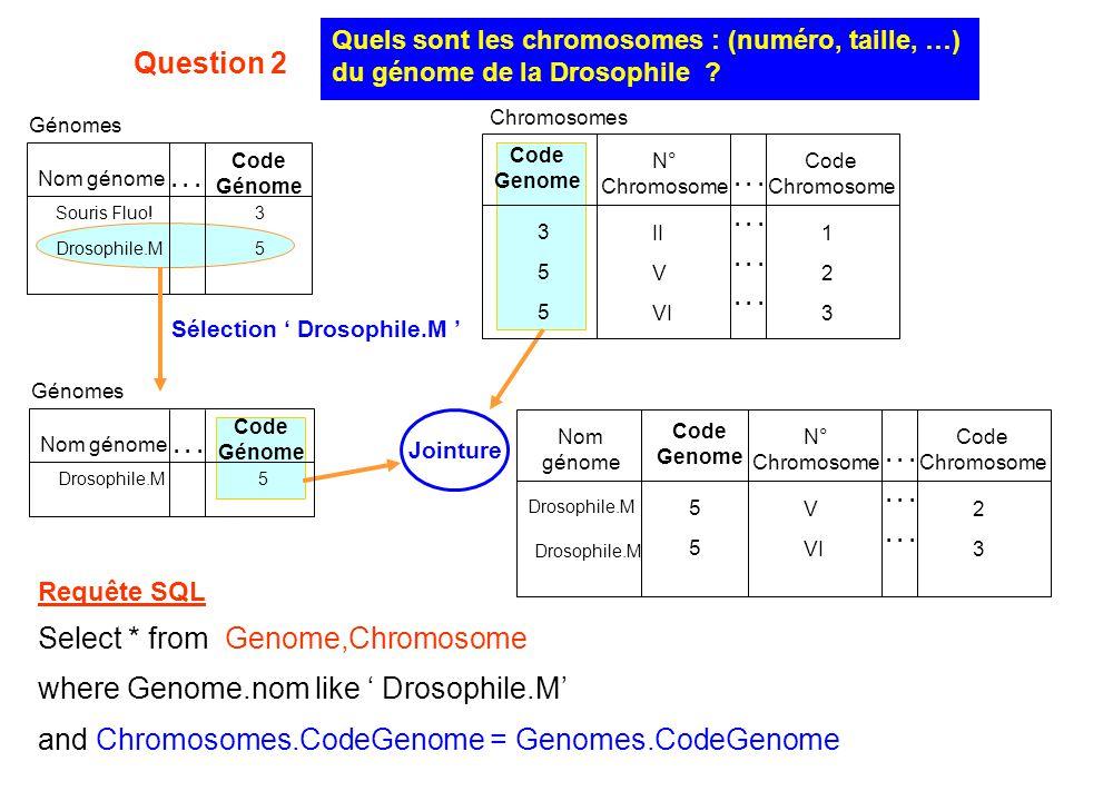 Jointure Sélection ' Drosophile.M ' Quels sont les chromosomes : (numéro, taille, …) du génome de la Drosophile ? Génomes Code Génome 3535 Souris Fluo