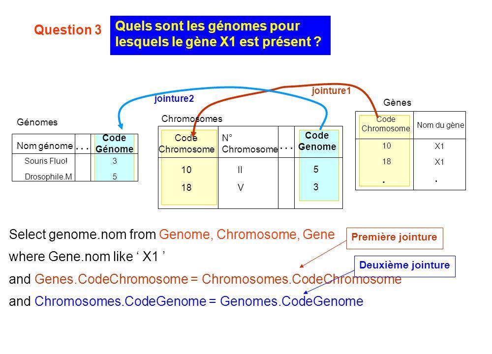 Quels sont les génomes pour lesquels le gène X1 est présent ? Gènes Code Chromosome X1. 10 18. Nom du gène Select genome.nom from Genome, Chromosome,