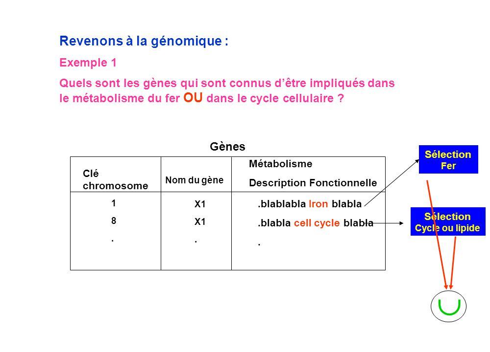 Sélection Cycle ou lipide Revenons à la génomique : Exemple 1 Quels sont les gènes qui sont connus d'être impliqués dans le métabolisme du fer OU dans