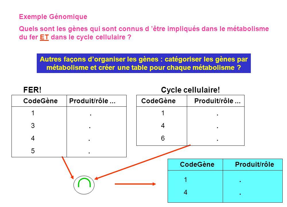 Autres façons d'organiser les gènes : catégoriser les gènes par métabolisme et créer une table pour chaque métabolisme ? Exemple Génomique Quels sont