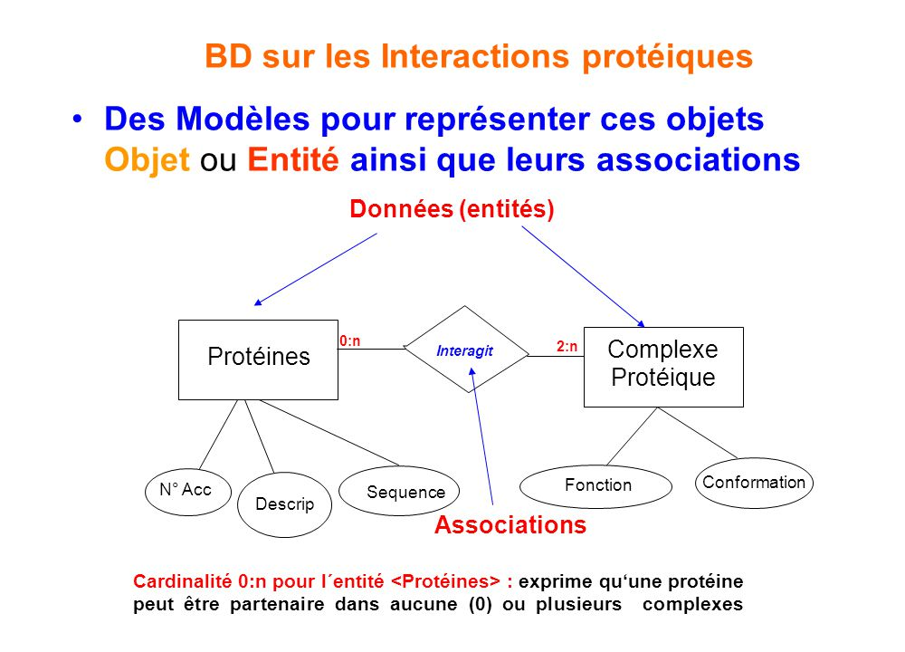 •Des Modèles pour représenter ces objets Objet ou Entité ainsi que leurs associations Protéines N° Acc Descrip Sequence Interagit Complexe Protéique F