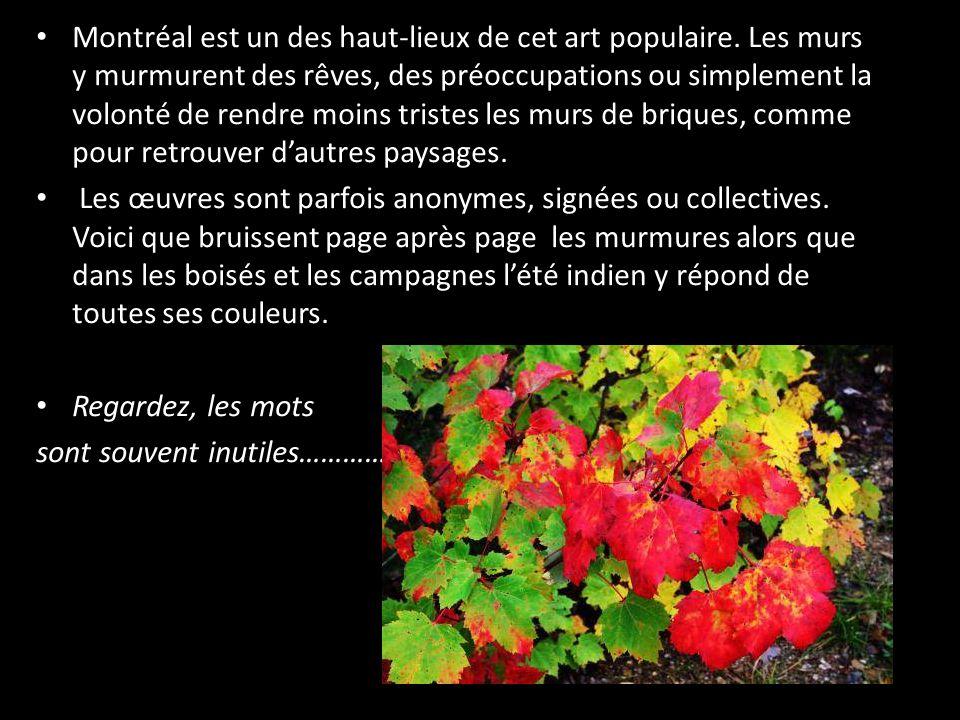 • Montréal est un des haut-lieux de cet art populaire.