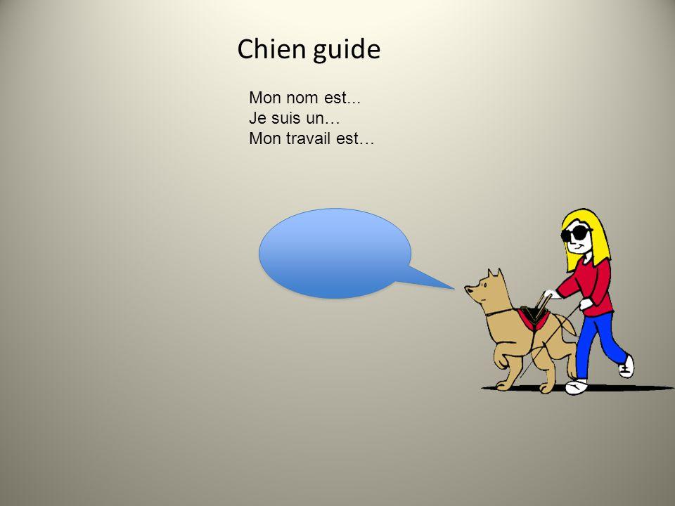 Chien guide • Le chien guide est un animal utilisé pour aider une personne handicapée. Il procure principalement à cette personne une sécurité et un c