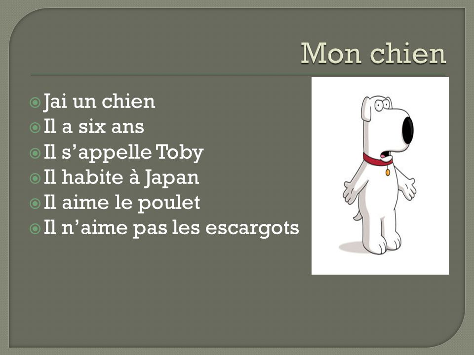  Jai un chien  Il a six ans  Il s'appelle Toby  Il habite à Japan  Il aime le poulet  Il n'aime pas les escargots