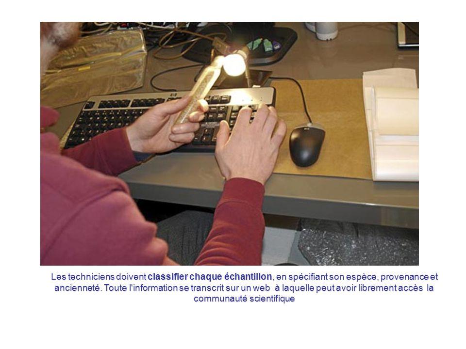 A l'entrée du coffre, se trouve la salle de contrôle où les techniciens du coffre enregistrent sur les ordinateurs du centre chaque échantillon de gra