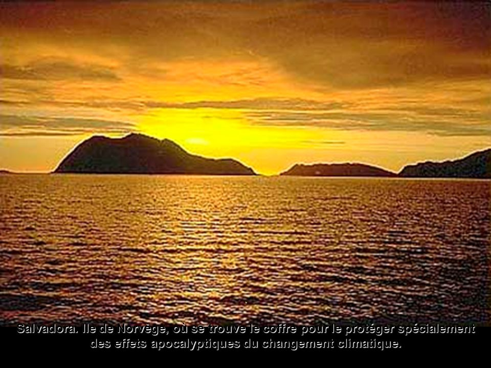 . L'arche de Noé des graines a été construite á Longyearbyenun petit village minier dans l'île de Spitsbergen qui appartient à l'archipel norvégien de