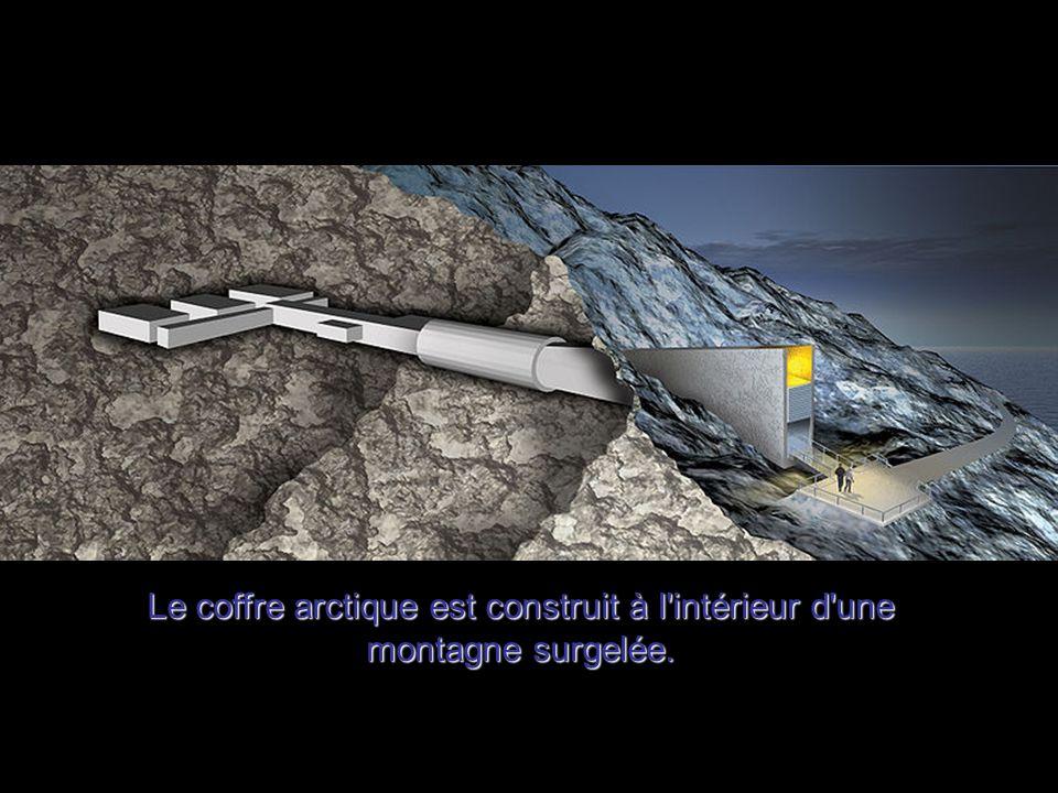 Le coffre arctique est construit à l intérieur d une montagne surgelée.