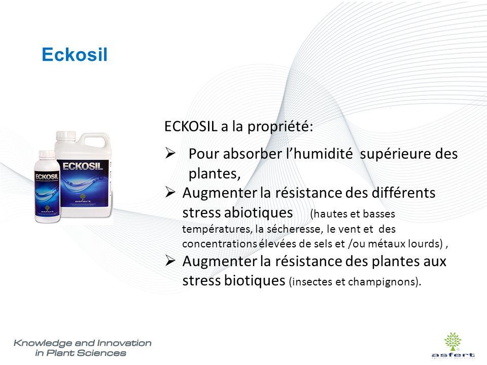 Eckosil ECKOSIL a la propriété:  Pour absorber l'humidité supérieure des plantes,  Augmenter la résistance des différents stress abiotiques (hautes