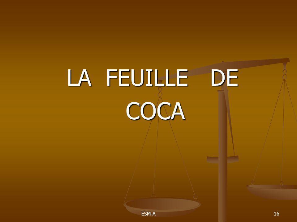 ESM-A16 LA FEUILLE DE COCA COCA
