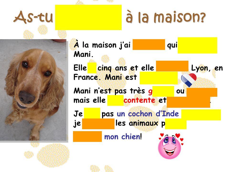 As-tu un animal à la maison? À la maison j'ai un chien qui s'appelle Mani. Elle a cinq ans et elle habite à Lyon, en France. Mani est française. Mani