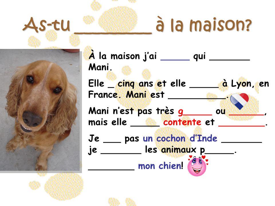 As-tu _________ à la maison? À la maison j'ai _____ qui _______ Mani. Elle _ cinq ans et elle _____ à Lyon, en France. Mani est __________. Mani n'est