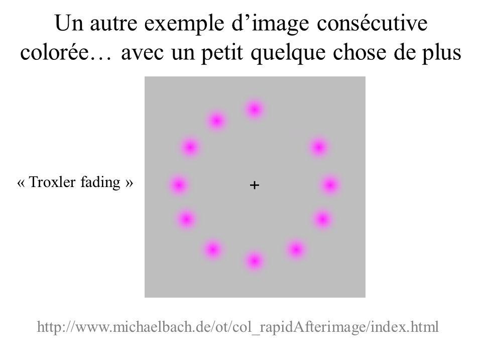 http://www.michaelbach.de/ot/col_rapidAfterimage/index.html Un autre exemple d'image consécutive colorée… avec un petit quelque chose de plus « Troxle