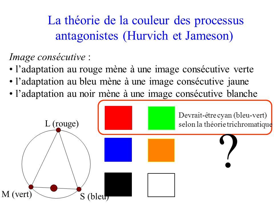 La théorie de la couleur des processus antagonistes (Hurvich et Jameson) Image consécutive : • l'adaptation au rouge mène à une image consécutive verte • l'adaptation au bleu mène à une image consécutive jaune • l'adaptation au noir mène à une image consécutive blanche .