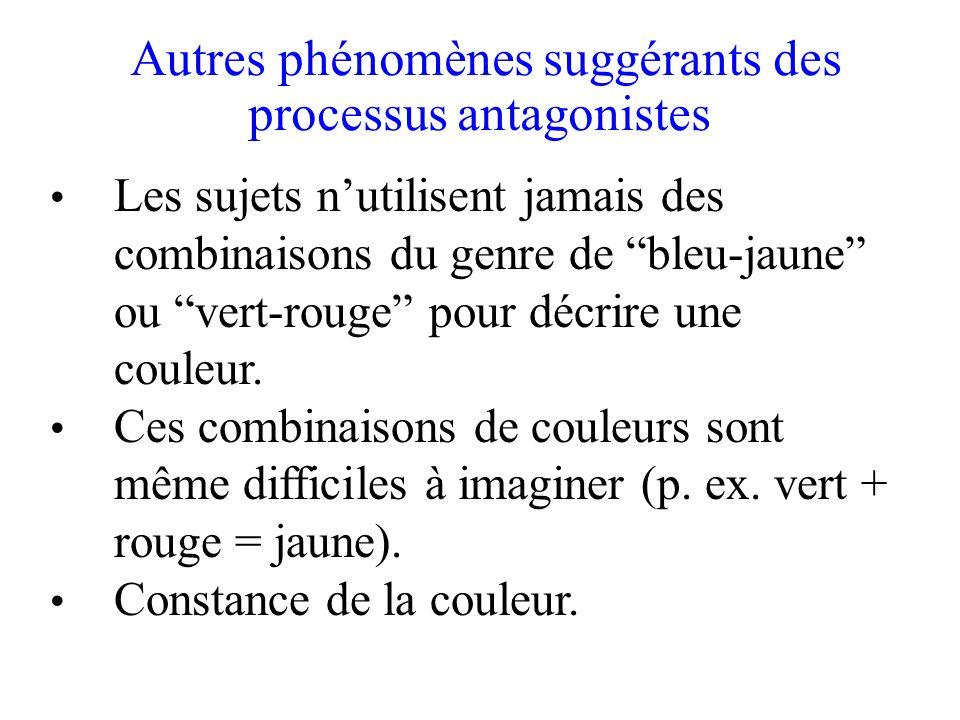 Autres phénomènes suggérants des processus antagonistes • Les sujets n'utilisent jamais des combinaisons du genre de bleu-jaune ou vert-rouge pour décrire une couleur.